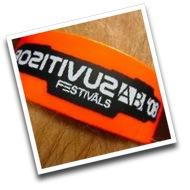 Positivus AB festival '08
