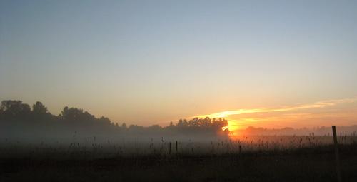 Saullēkts